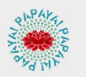 PAPAYA ART LOGO