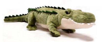 Douglas Stream Line Alligator main