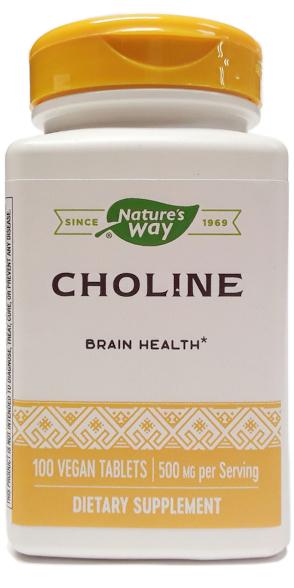 Nature's Way Choline 100 Tablets main